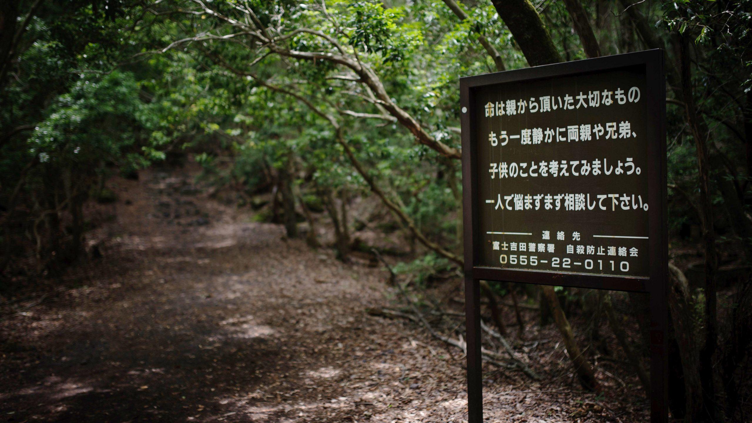Fakta-fakta Hutan Aokigahara Jepang