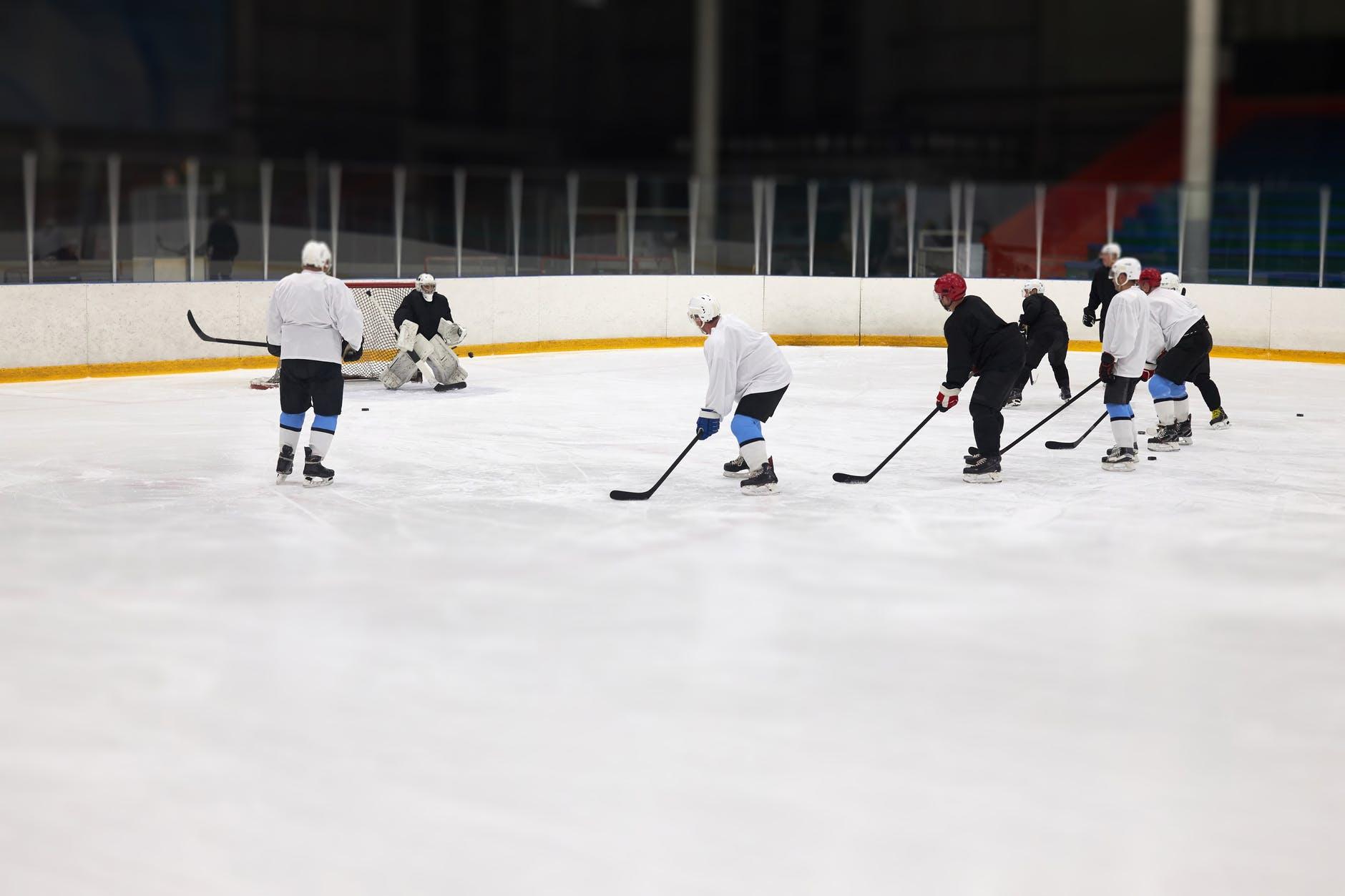 olahraga musim dingin