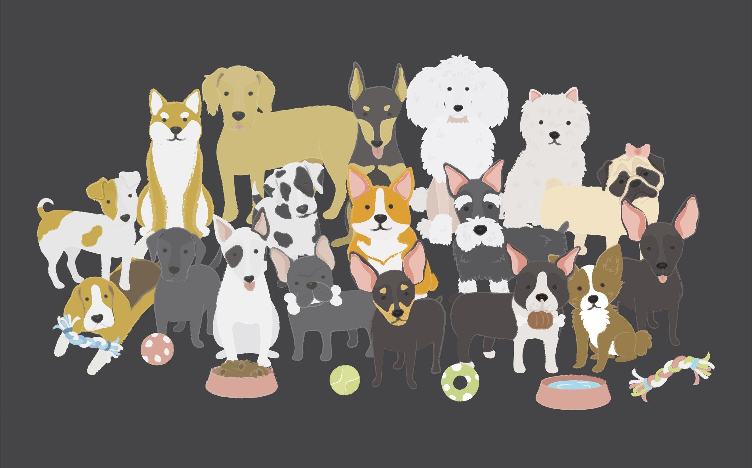 5 Ras Anjing yang Cocok Kamu Pelihara di Apartemen